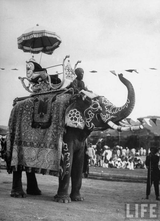 Nizam`s Personal Elephant