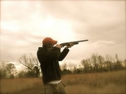 Top 10 Pheasant Hunting Tips