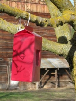 How To Make A Milk Carton Birdhouse