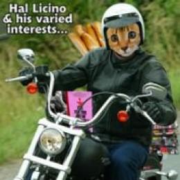 Hal Licino