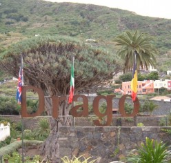 Icod de los Vinos the Tenerife city of the world famous Dragon Tree of the Canary Islands