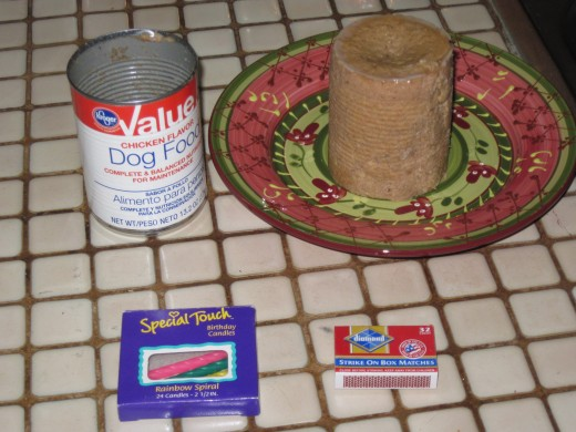 The cake is simple - candles and some colored dry dog food bits on Chika's favorite canned dog food