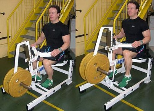 seated calve machine helps to develop the Soleus muscle of the calves