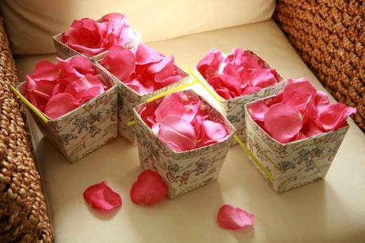 Petals to Lay at Your Feet