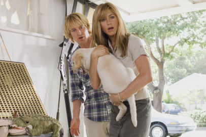 "John and Jennifer Grogan arrive home from the airport to find their garage trashed by Marley. Scene from ""Marley & Me."""