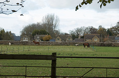 A Perfect Paddock with Post and Rail Fence........All photos courtesy Flickr