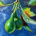 Avocado, the wonder fruit.