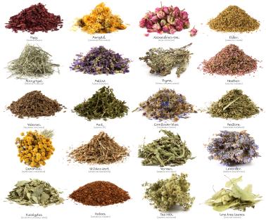 Beneficial herbs