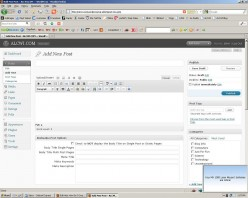 The Wordpress 'add new' post screen