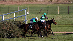The Grand National Scene of Dick Francis the jockey, as a Jockey for the Queen Mother. A daring and exciting race.