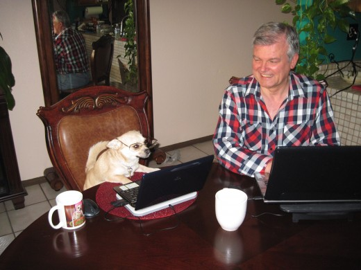 The Family chihuahua as a writing assistant