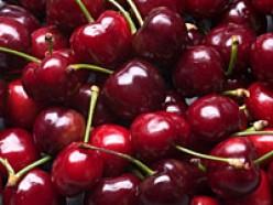 Cherries - Health Benefits