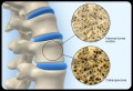 Bone Growth, Bone Health & Osteoporosis