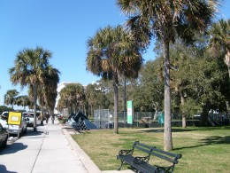The Battery: cannons among the palmettos