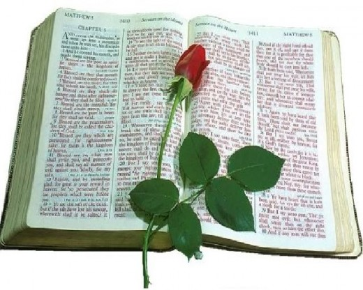 Bible with rose.