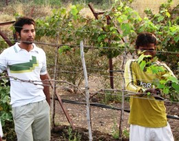 Nitin instructs a worker @ the Vineyard .