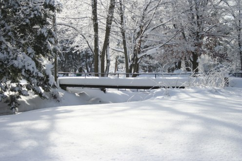 Picture of Snow Covered Bridge