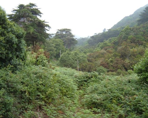 Las Mercedes mountains