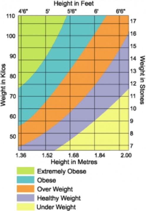 healthy weight chart for women. Ideal Body Weight Chart