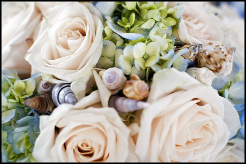 A summer bouquet with hydrangeas, roses, and seashells.
