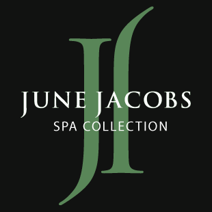 June Jacobs skin purifying mask