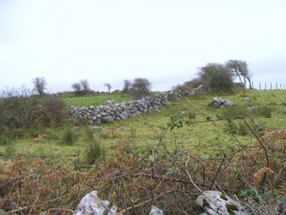 Mortar-less stone walls of The Burren