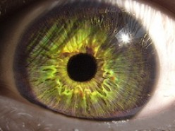 Envy: A Deadly Sin: The Green Eyed Monster And You!