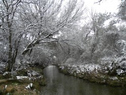 Winter Snow scene and Ice Photos in Austin Texas Hill Country Pictures