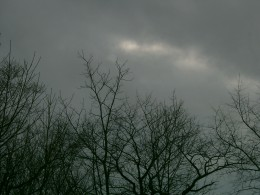 Gray Winter Sky