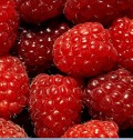 Raspberries - Part of a Healthy Herbal Douche
