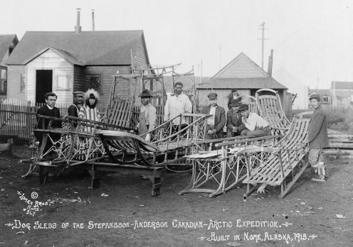 These dog sleds srived an Arctic Expedition in 1913 - the StefanssonAnderson Canadian project.