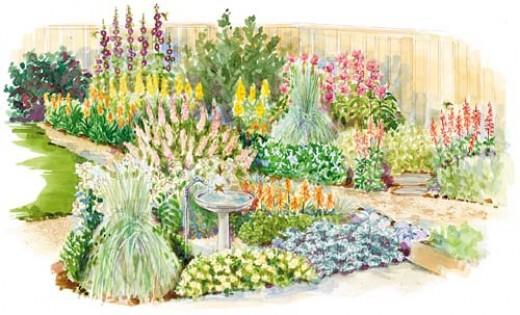 A Hummingbird Garden Layout