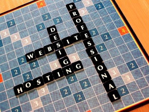 Web Hosting Professional