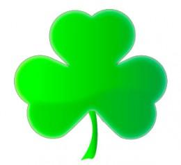 Shamrock -- One of Irelands symbol