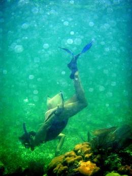 Snorkeling in the green ocean waters.