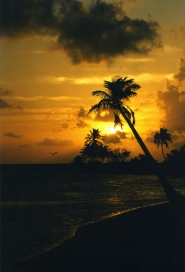 Hauntingly beautiful Belizian sunrise.
