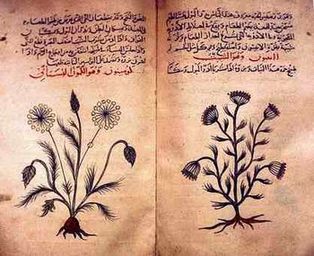 Herbal book Arabic -- ancient herbalism, aside form China, Arab countries also used herbs for curing diseases