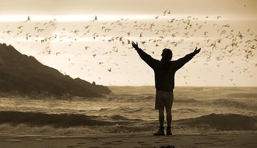 Feel Free by sero01.