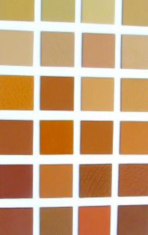 A warm color scheme
