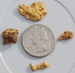 Small yellow gold nuggets