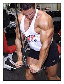 Workouts That Make Your Triceps Look Bigger and More Defined