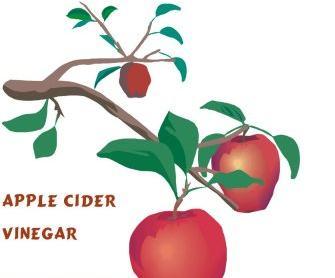 The Beauty of Vinegar