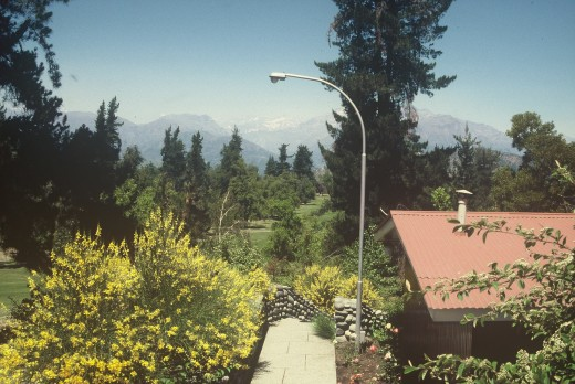 The Campo de Coya bungalows, with the greenery and flowers all around and the Andes in the background.