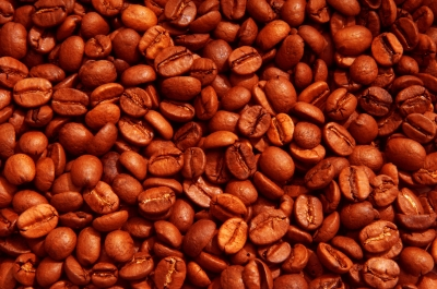 delicious coffee beans