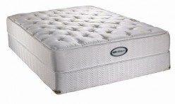 Mattress Comparison Name Info