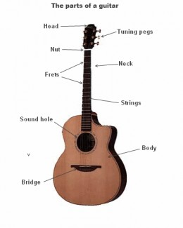 The parts of an acoustic guitar