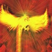 Phoenix 69 profile image