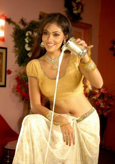 Hot Saree Navel Show Blouse Sadha