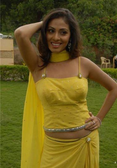 Hot Yellow Saree Show Sadha