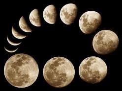 Lunar calendar for gardening